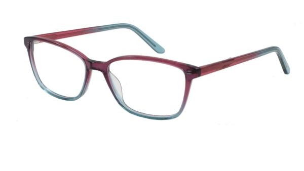 FC 728 Unisex Glasses