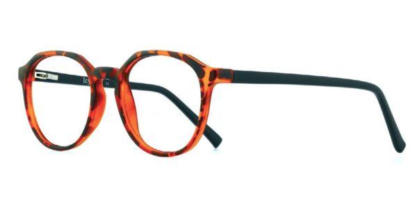 Icy 299 Men's glasses