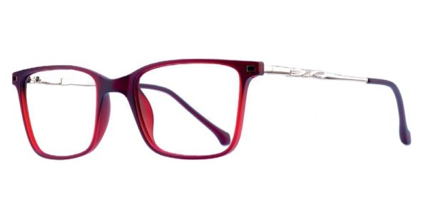 Icy 309 Women's glasses